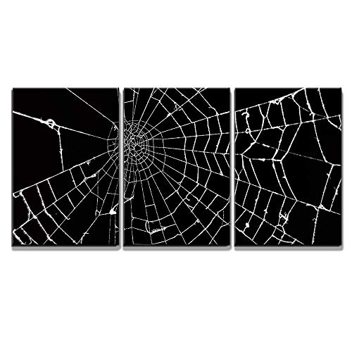 wall26 - 3 Piece Canvas Wall Art - Spider Web on Black Background - Modern Home Decor Stretched and Framed Ready to Hang - 24