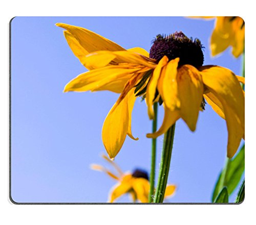 luxlady-natural-rubber-gaming-mousepads-blooming-yellow-flowers-rudbeckia-green-meadow-full-of-image