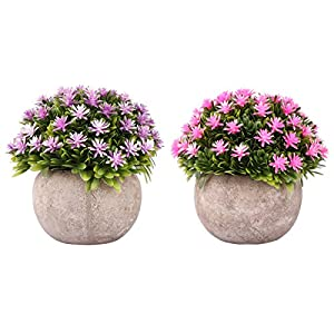 2 Set Artificial Flowers for Home D¨¦cor, Mini Plastic Lifelike Fake Plants in Pot.(Purple and Pink) 64
