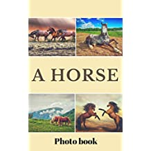 Horse Photo Book (Animals for Adults)