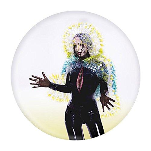 Bjork Album Cover Magnets - Album Magnet