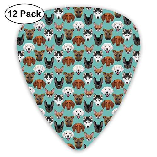 - Guitar Picks 12-Pack,Polygonal Art Style Different Breed Of Canine Labrador Portraits Angular Puppy Love