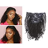 Lacerhair Kinky Curly Clip in Human Remy Hair Extensions Brazilian Kinky Coily Curly Clips Hair Extensions 4A 4B 8A Virgin Thick Natural Black Color Clip on For Black Women (16 inch, Kinky Curly 4A)