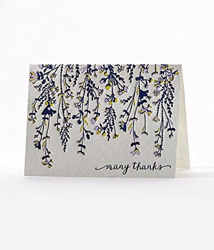 Elum Designs Letterpress Note Card Set, Cascade - Designs Elum