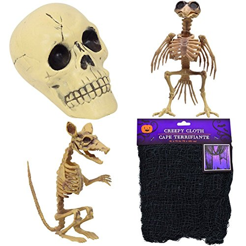 Halloween Decoration Set with Rat and Bird Skeletons, Human Skull and Creepy Cloth. Bundle is Perfect for School, Office or Cubicle.