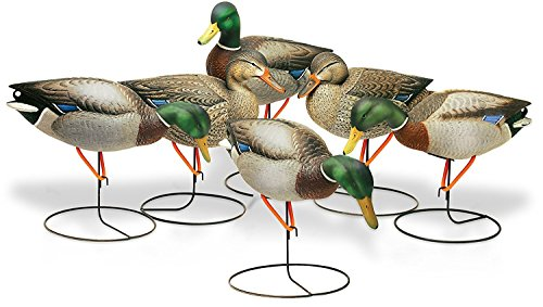 - Final Approach FA Gunners Hd Field Mallard Decoys with Flocked Heads, 6 Pack