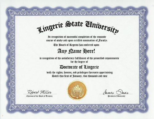 Lingerie Degree: Custom Gag Diploma Doctorate Certificate (Funny Customized Joke Gift - Novelty Item)