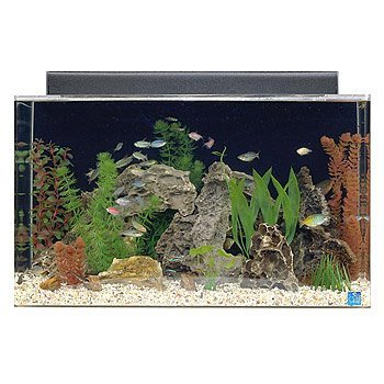 SeaClear 29 gal Show Acrylic Aquarium Combo Set 30 by 12 by 18 Clear