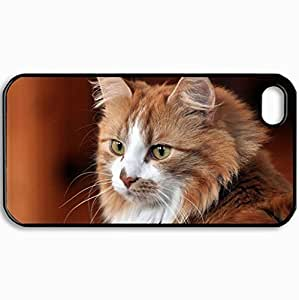 Diy Yourself Customized Cellphone case cover Back Cover For iPhone 4 4S, protective Hardshell case cover Personalized W2Qzb2cusHZ Cats A Cat Look The House Cats Black