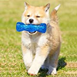 OK HITECH S size small dog chew toys stick with squeaky puppy chewing toys bones molar sticks puppy chew toys for tiny dogs safe TPR material indestructible puppy chewing repellent