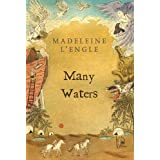 Many Waters (A Wrinkle in Time Book 4)