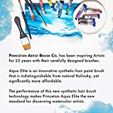 Princeton Aqua Elite, Series 4850, Synthetic