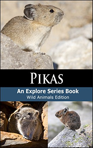 Pikas: Wild Animals Edition