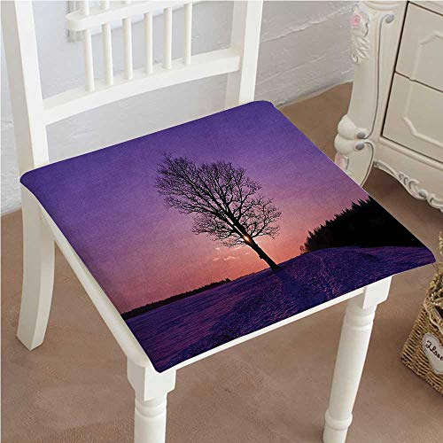 Mikihome Premium Comfort Seat Cushion Tree at Frozen Wintertime Snowy Field Evergreen Cushion for Office Chair Car Seat Cushion 26'x26'x2pcs