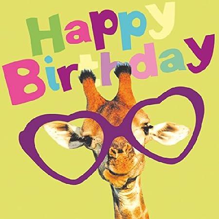 Love Giraffe Birthday Card Amazon Kitchen Home