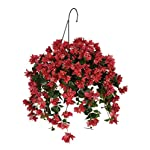 House-of-Silk-Flowers-Artificial-WatermelonPink-Bougainvillea-Hanging-Basket