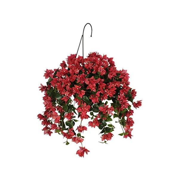 House of Silk Flowers Artificial Watermelon/Pink Bougainvillea Hanging Basket