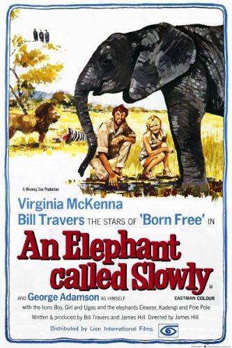 an-elephant-called-slowly