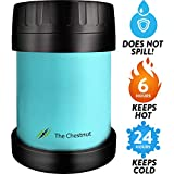 Small Thermos Food Jar Funtainer for Women, Men & Kids - Stainless Steel Thermo Lunch Box - Travel Metal Container - Hot Food, Soup Thermos- 10 oz - Sky Blue