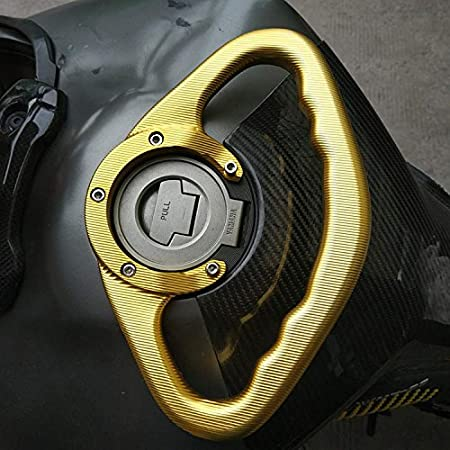 RONSHIN Poign/ée Passager pour Yamaha FZ1 FZ6 FZ8 XJ6