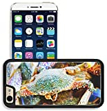 iphone 6 case salt life - Liili Apple iPhone 6 iPhone 6S Aluminum Backplate Bumper Snap iphone6/6s Case Saltwater fishing Marine life nature background 28454387