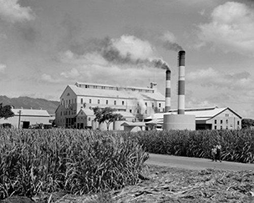 Posterazzi USA Hawaii Islands Oahu Sugar mill at Ewa Plantation Poster Print (18 x 24)