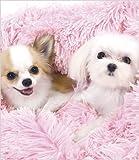 Pink Shag Dog Blanket By Susan Lanci from Susan Lanci Designs