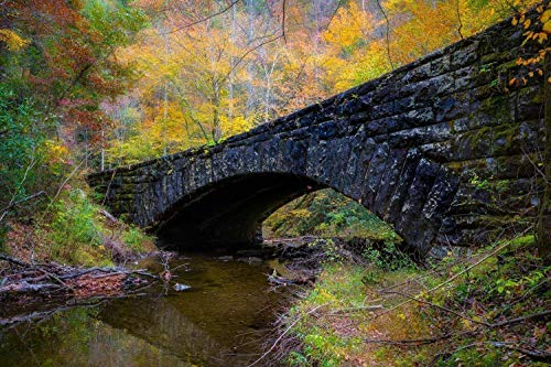 Autumn Photography Wall Art Print - Picture of Stone Bridge with Fall Colors along Laurel Creek in Smoky Mountains Scenic Home Decor 5x7 to 40x60