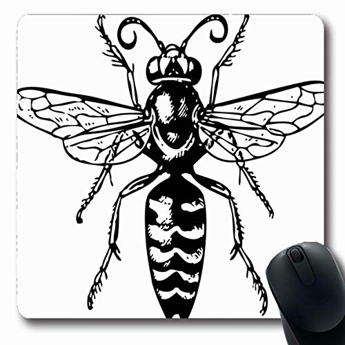 - Ahawoso Mousepads for Computers Eyes Abdomen Wasp Bembex Nature Bug Chops Burrow Chela Claw Design Oblong Shape 7.9 x 9.5 Inches Non-Slip Oblong Gaming Mouse Pad