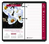 House of Doolittle 2017 Desk Calendar Refill, Daily, Earthscapes, 3.5 x 6'' (HOD417-17)