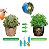 Plant Self Watering Spikes Vacation Automatic Plant