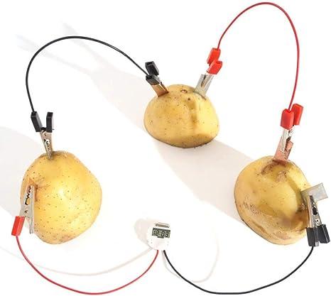 Bio-Energy Science Kit Experimental Science Toy