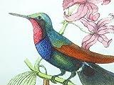 20 pcs Vintage Paper Napkins Decoupage Cute Birds