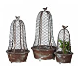Creative Co-Op Decorative Metal Planter Set with Wire Cloches