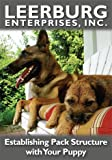 Living with Your Puppy And Establishing Pack Structure