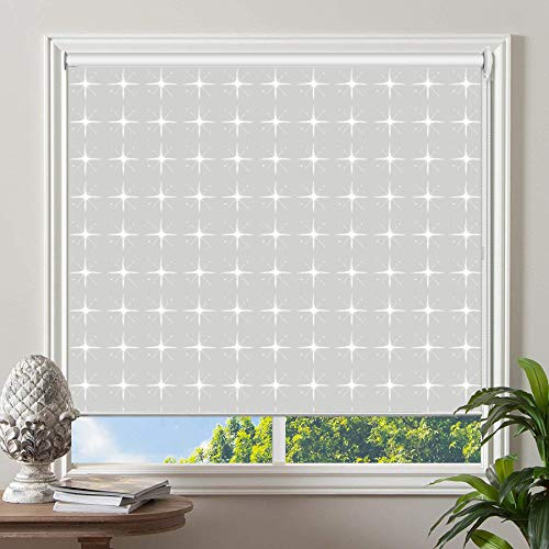 PASSENGER PIGEON Blackout Window Shades, Premium UV Protection Water Proof Custom Roller Blinds, Printed Picture Window Roller Shade, 83″ W x 56″ L, JIHE-13