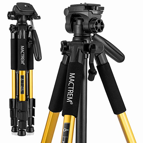 Most Popular Tripods & Monopods