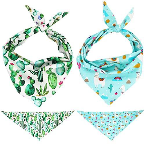 Fiesta Bandana - Free Sunday Variouse Pattern Pet Dog Bow Tie Collar ... (M, Cactus Combo)