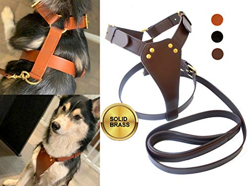TUGBY L/XL Large Dog Leather Harness Set with Padded Leather Leash, Training Harness (L, Chestnut)