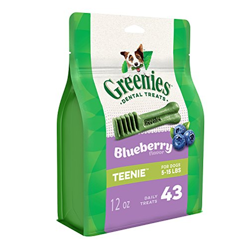 GREENIES TEENIE Natural Dog Dental Care Chews Oral Health Dog Treats Blueberry Flavor, 12 oz. Pack (43 Treats)