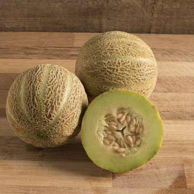 David's Garden Seeds Fruit Melon Eden Gem 25 Organic Heirloom Seeds