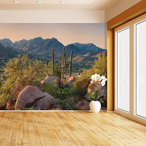 HIMURAL Pinnacle Peak Park as Sun Rises Over Cactus and Hiking Trails Self Adhesive Peel and Stick Wallpaper Self Stick Mural Photos Home Wall Paper Sticker Wall Mural Decals Fresco Posters Removable