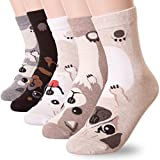 Puppy Dog Print Crew Socks,One size,(US shoes size 5 to 10),(5 Pairs)
