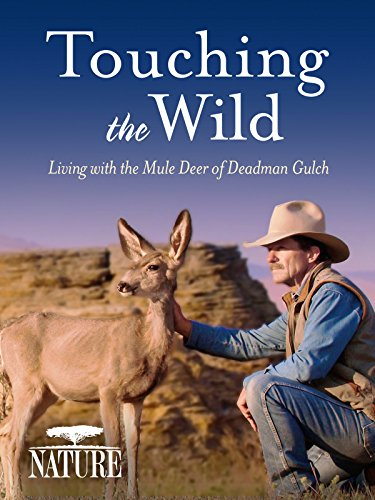 Deer Davids (Nature: Touching the Wild: Living with the Mule Deer of Deadman Gulch)