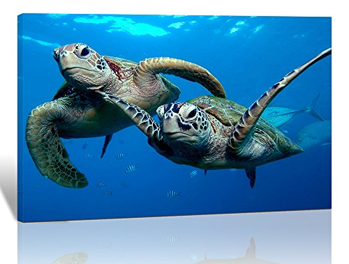 Purple Verbena Art 1 Panel Two Submarine Turtles under the Sea Pictures Prints on Canvas Walls Paintings, Modern Seaview Animal Giclee Wall Artwork for Home Decor, Stretched and Framed, 12x16 Inch (Turtle Picture)