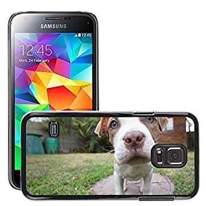 Super Stella Slim PC Hard Case Cover Skin Armor Shell Protection // M00106838 Puppy Pitbull Dog Wide Angle // Samsung Galaxy S5 MINI SM-G800