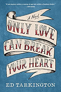 Only Love Can Break Your Heart: A Novel