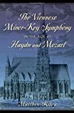 The Viennese Minor-Key Symphony in the Age of Haydn and Mozart, Riley, Matthew, 0199349673