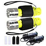 HECLOUD 2 Packs Scuba Diving Flashlight with