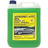 Anticongelante 30% -17ºC Orgánico.Envase 5 Litros. Color verde.